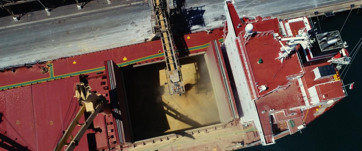 Grain getting loaded onto a Bulk Vessel